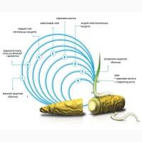 Семена люцерны Verko в оболочке Mantelsaat