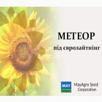 Продам насіння соняшнику гібрид Метеор/8 рас вовчок/посухостійкий