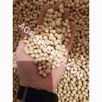 Семена гороха VERNON канадский трансгенный сорт