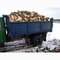 Продаю тверде паливо дрова, колоті дрова Луцьк