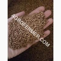 Семена кориандра PUEBLO Канадский трансгенный сорт двуручка