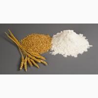 Закупаем пшеницу по всей Украине, дорого