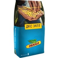 Семена кукурузы Monsanto ДКС 3472 Монсанто на посев, посевная
