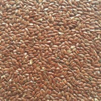 Куплю лен с поля (96-98%)