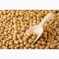 Купим сою ГМО по Киевской области