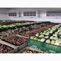 Пропонуємо склади під зберігання сільгоспродукції