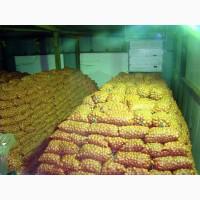 Шукаємо склади під зберігання сільгоспродукції