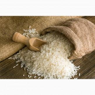 Рис длиннозернистый