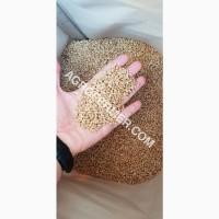 Семена пшеницы сорт Baxter канадская трансгенная двуручка