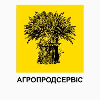 Пропонуємо насіння ярої пшениці сортів КВС Шірокко, КВС Аквілон, 1 репрод