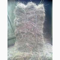 Продам сено в тюках, разнотравье