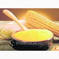 Кукурузная крупа и мука от производителя оптом