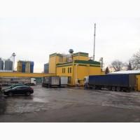 Гречка оптом 13 508 гр-т бесплатная доставка по Украине