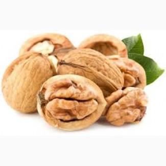 Продам грецкий орех, семечка тыквы, фасоль