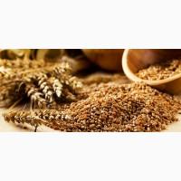 КУПЛЮ пшеницу, кукурузу, ячмень и др. культуры