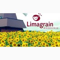 Продам семена подсолнечника LIMAGRAIN Тунка