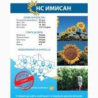 Гібрид соняшнику НС Имисан | Юг Агролидер