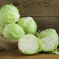 Оптові ціни на свіжу капусту