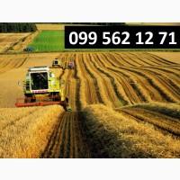 Услуги по уборке сои кукурузы зерновых рапса буряка Одесса