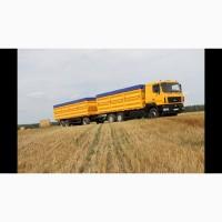 Перевезення зерновозами с/г вантажів по Україні