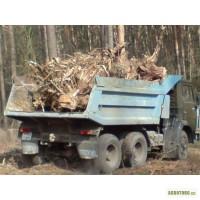 Вывоз мусора Киев. Аренда самосвала. Вывоз грунта
