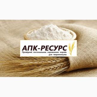 Продам Муку пшеничную высшего и первого сортов