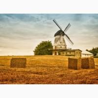 Послуги з переробки зернових (ячмінь, овес, пшениця, кукурудза, горох, гречка)