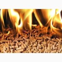 Польская фирма закупает топливные древесные гранулы