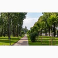 Травосуміш для озеленення паркових зон
