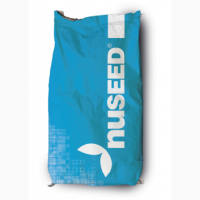Насіння соняшника Н4ХМ411 від Нусід (Nuseed)/високоолеїновий