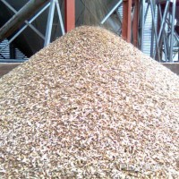 Куплю зерновідходи
