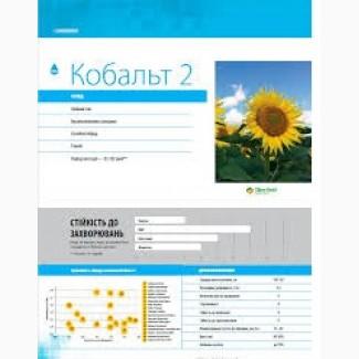Соняшник Кобальт 2