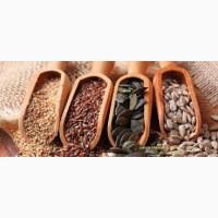Куплю отходы семян льна, рапса, горчицы, подсолнуха и хлопчатника