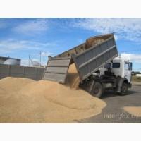 Зерновозы для перевозки зерна Украина