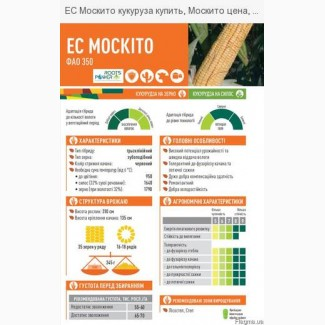 Кукуруза ЕС МОСКІТО ФАО 350