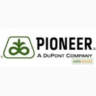 Кукуруза Пионер ПР37И12