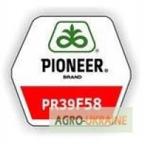 Кукуруза Пионер ПР39Ф58