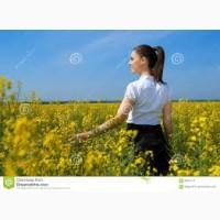 Закупаем рапс нового урожая
