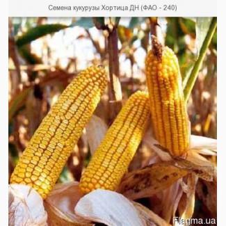 Кукуруза MAS 20.F/МАС 20.Ф ФАО 230