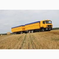 Услуги зерновозов. Перевозка зерна по Украине