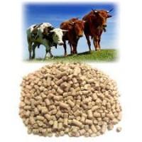 Доступні корми сира дробина