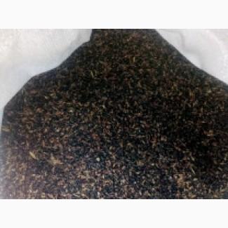 Семена суданской травы ДНЕПРОВСКАЯ 54 элита 1 репрод