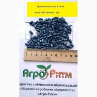 Подсолнечник Аркансель гранстароустойчивый, гибрид F1, семена (Семанс Франция)