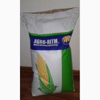 Семена кукурузы Патриция - ФАО 300, гибрид F1, (Семанс Франция)