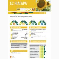 Семена подсолнечника ЕС Ниагара от Евралис цена за мешок