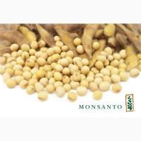 Продам насіння сої Максус RR2