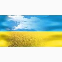 Туры на День независимости Украины, тур Карпаты, туры Закарпатье