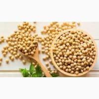 Куплю сою не ГМО