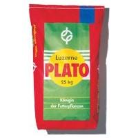 Семена Люцерны Plato
