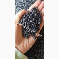 Семена подсолнечника NEWTON, канадский трансгенный гибрид